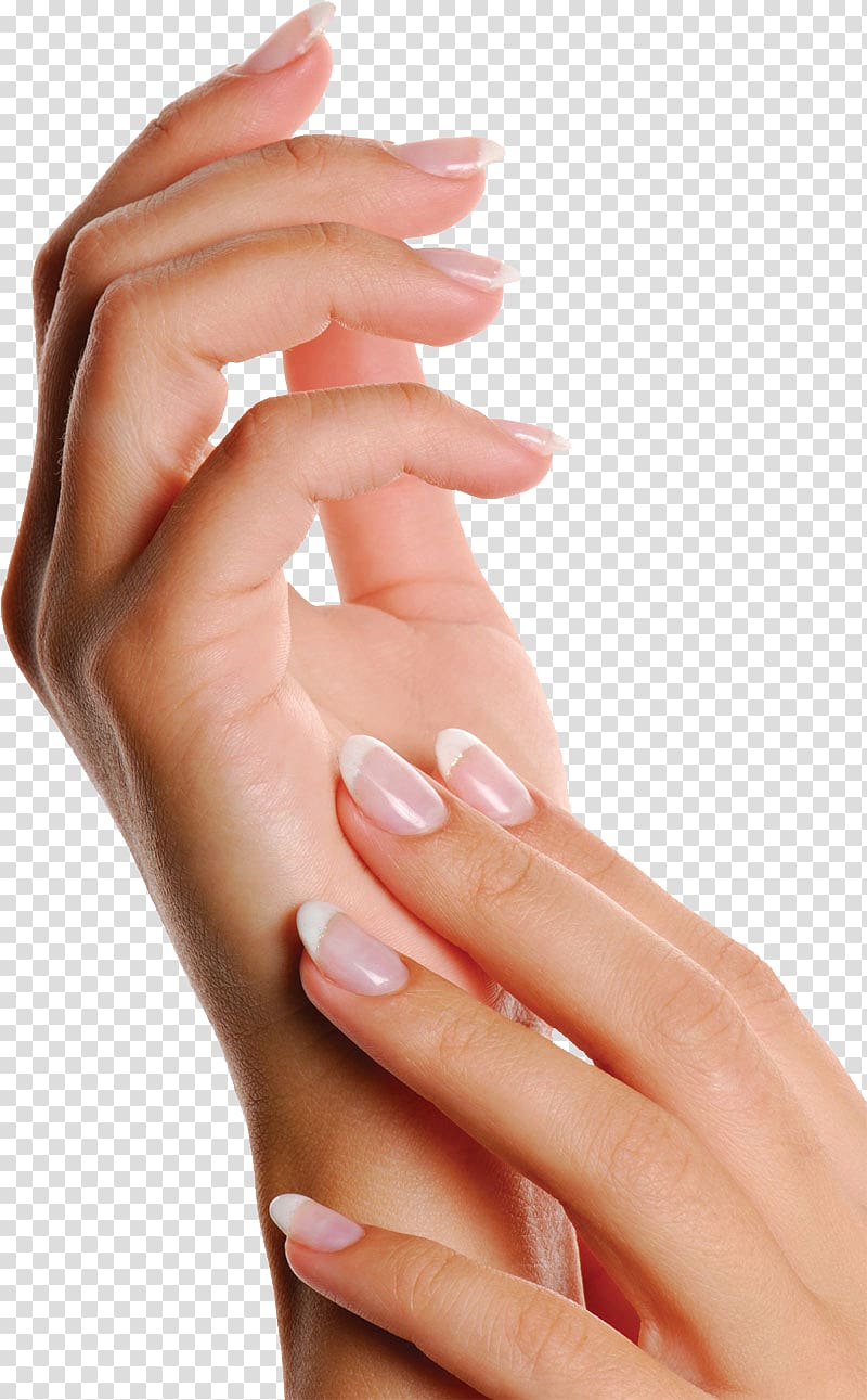 Nails clipart woman nail. Salon manicure hand artificial