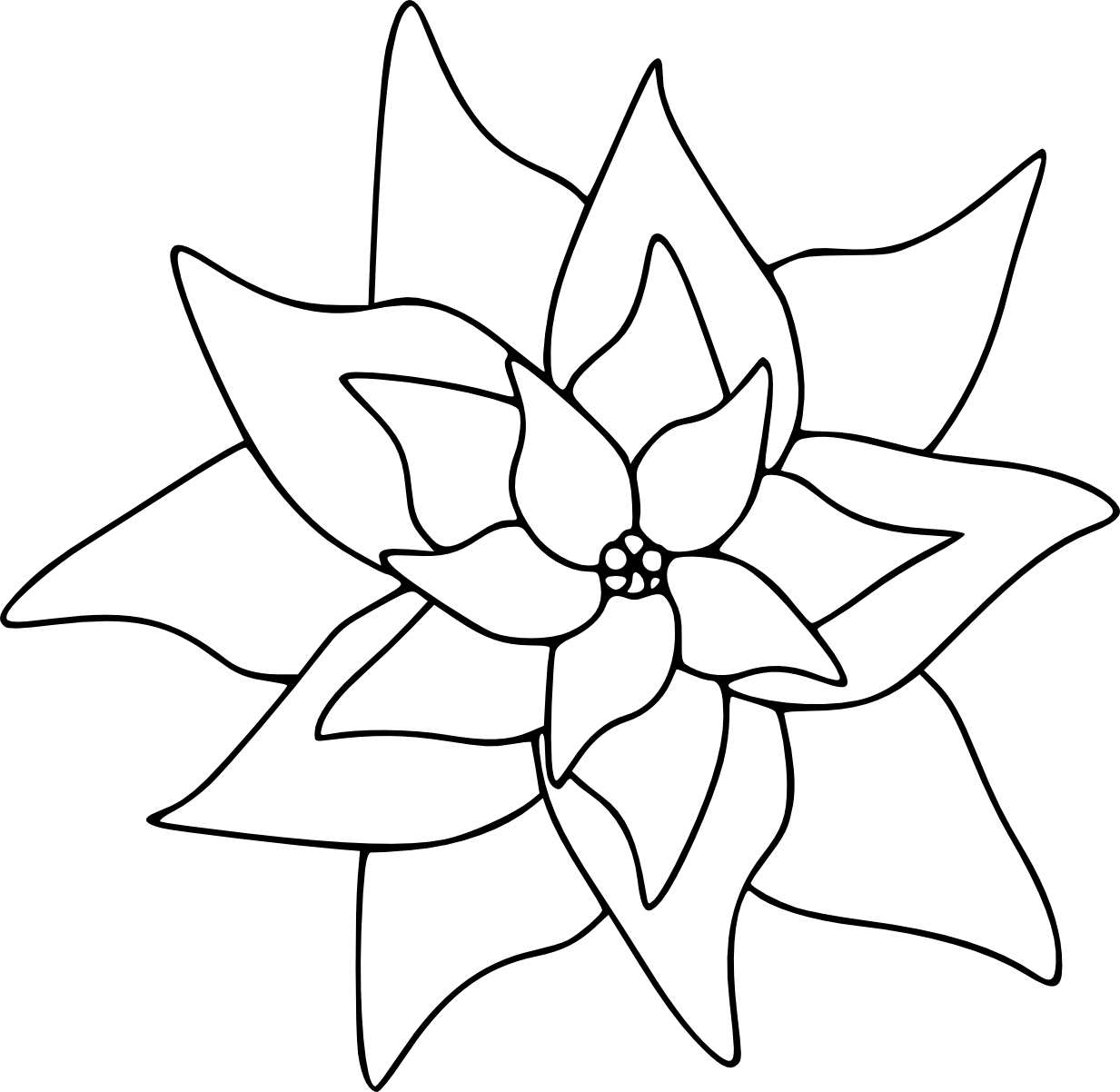poinsettias clipart outline