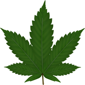 Marijuana clipart. Weed leaf