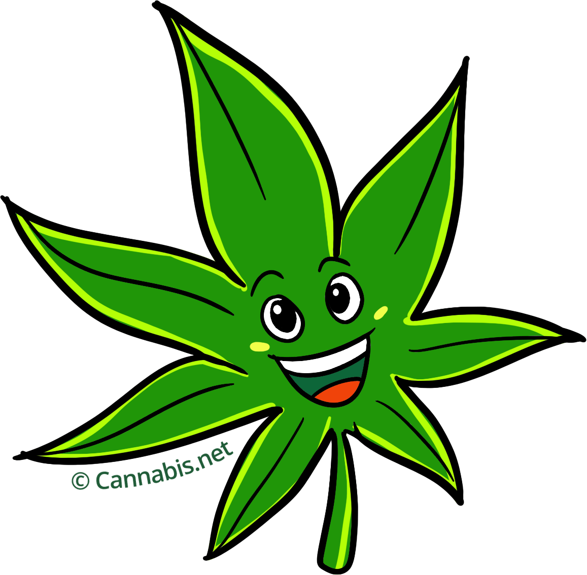 Pineapple express happy. Marijuana clipart daun