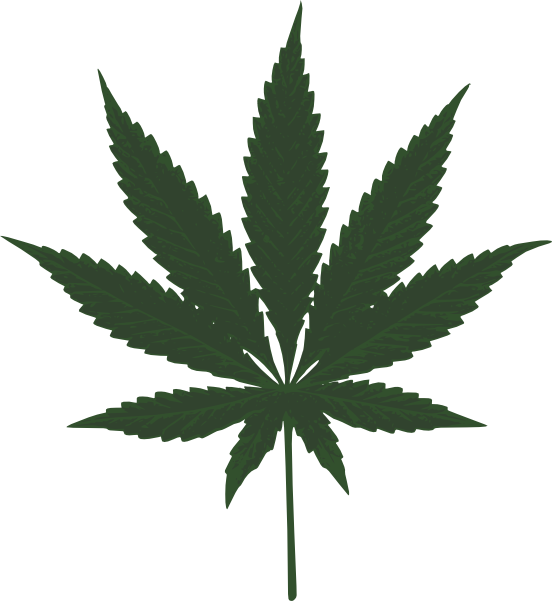 Marijuana clipart daun. Leaf clip art at