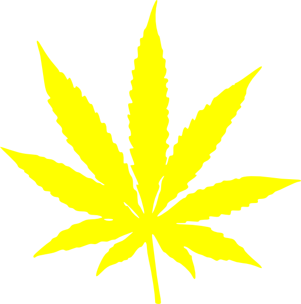 Cannabis leaf stars and. Marijuana clipart daun