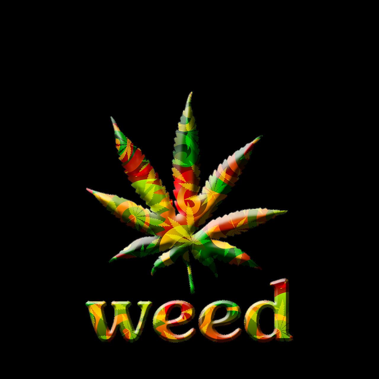 New facts about weed. Marijuana clipart doobie