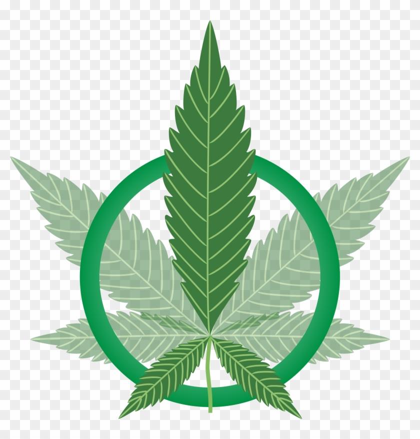 Big image drugs hd. Marijuana clipart drug