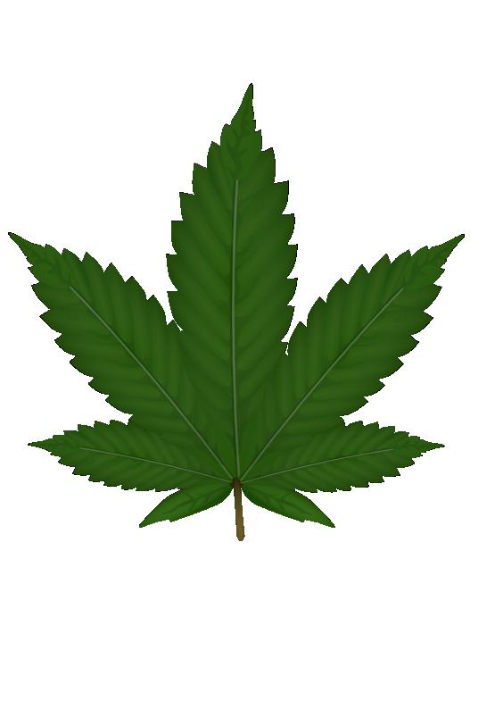 Marijuana clipart easy. Weed leaf panda free
