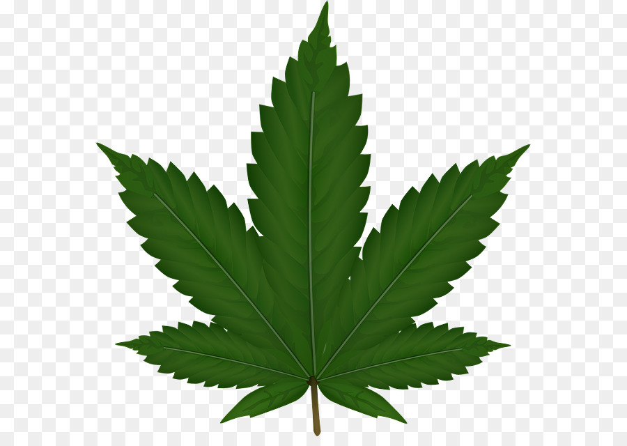 Family tree background leaf. Marijuana clipart hash