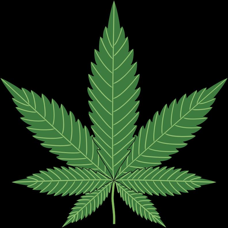 Plant png images black. Marijuana clipart jpeg