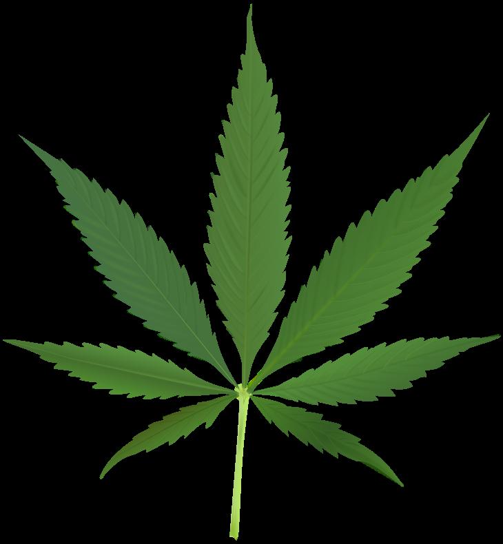 Marijuana clipart jpeg. Have you made up