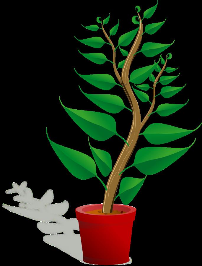 Plants clipart child. Free plant pictures download