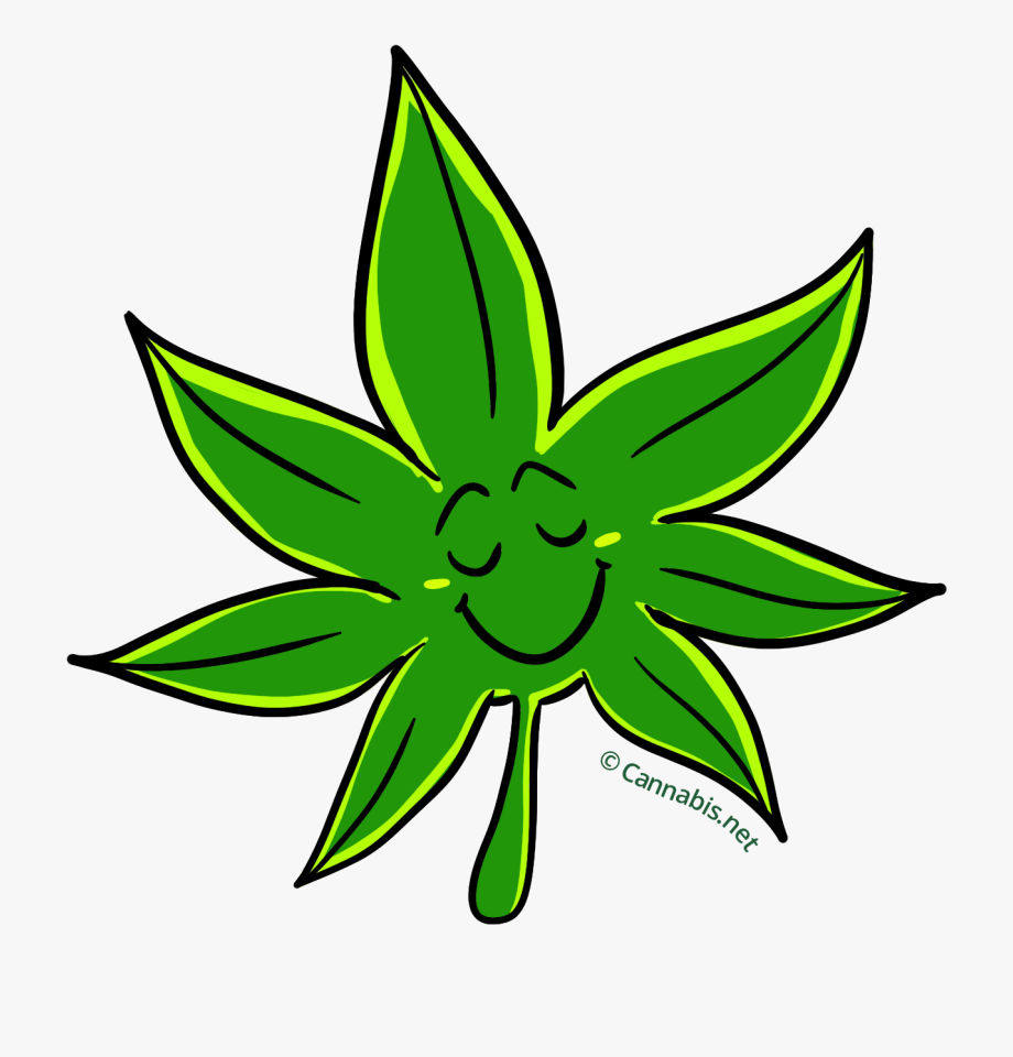 Free cliparts on . Marijuana clipart tropical plant