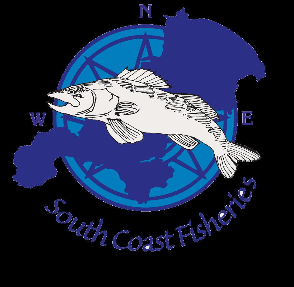 South coast fisheries . Market clipart fishmonger