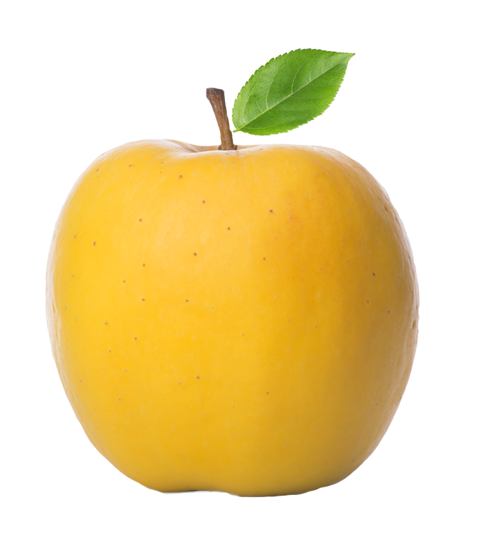 Pear clipart apple pear. First fruits marketing produce