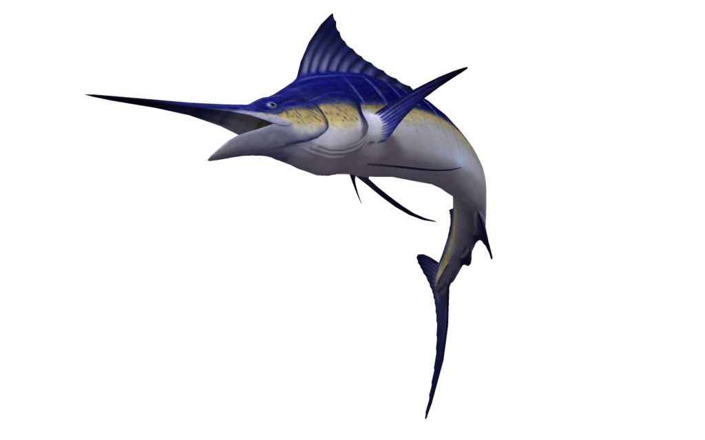 Marlin flying