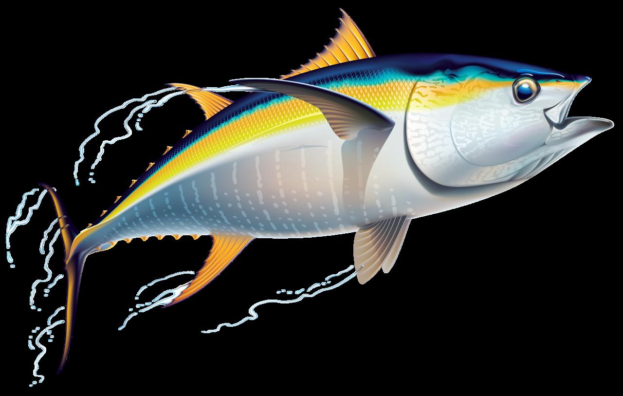 Tuna clipart cute.  png pinterest fish