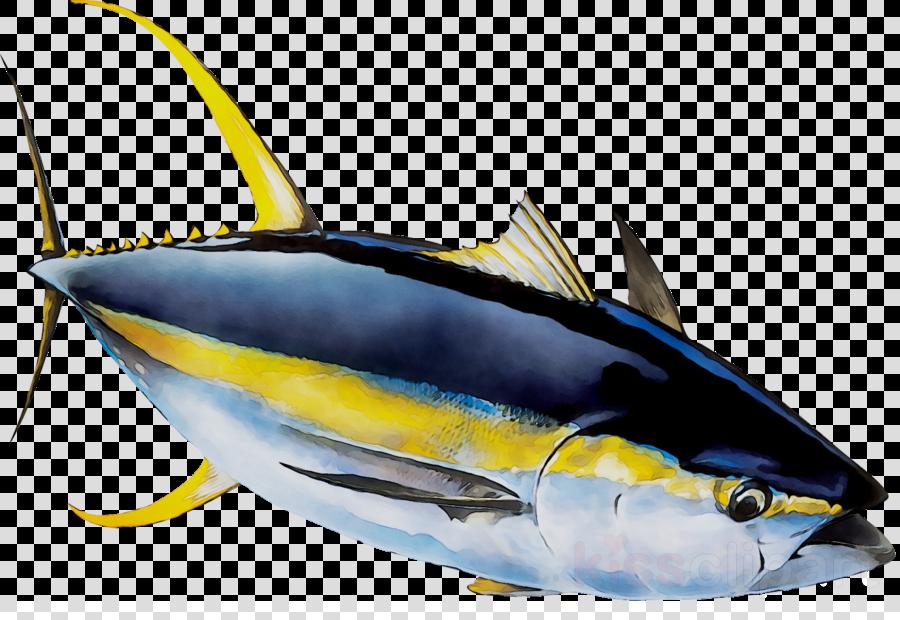 Tuna clipart yellowfin tuna. Fish cartoon marlin transparent