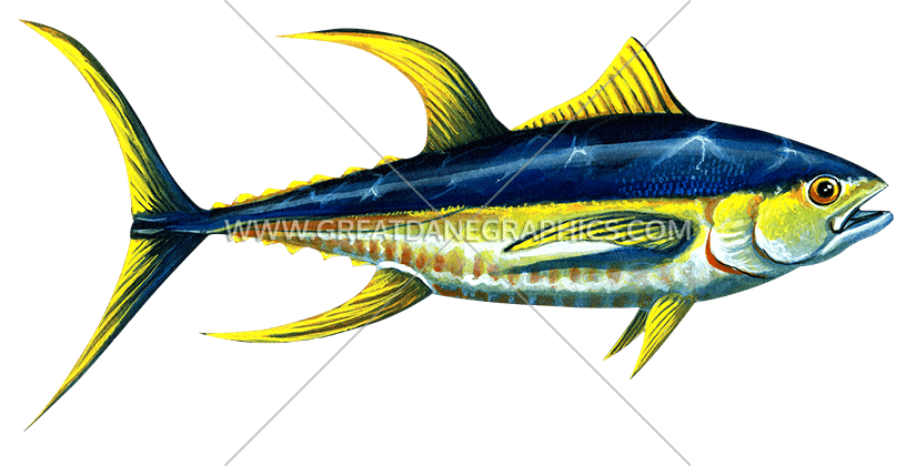 Yellowfin production ready artwork. Tuna clipart transparent background