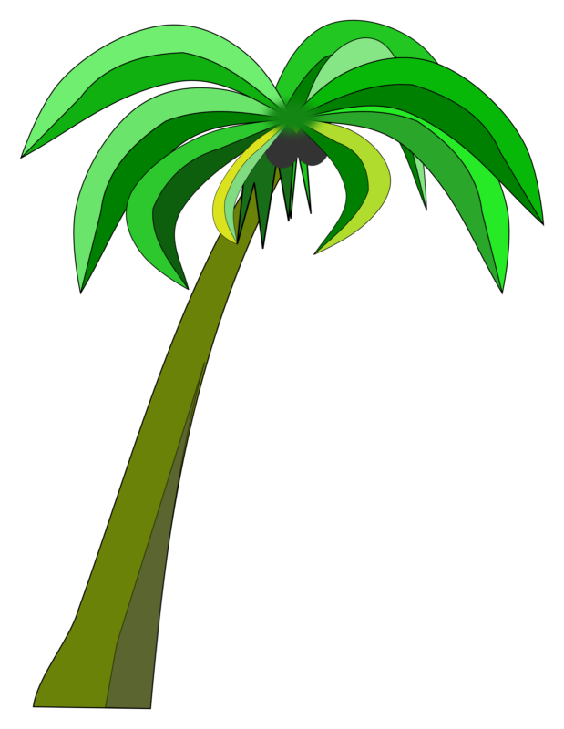 Free images photos download. Sunglasses clipart palm tree