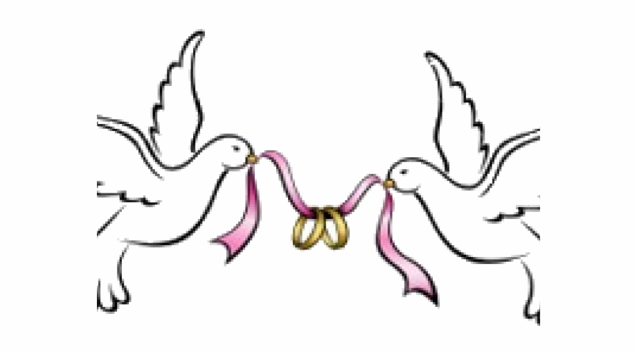 Wedding png free . Marriage clipart dove