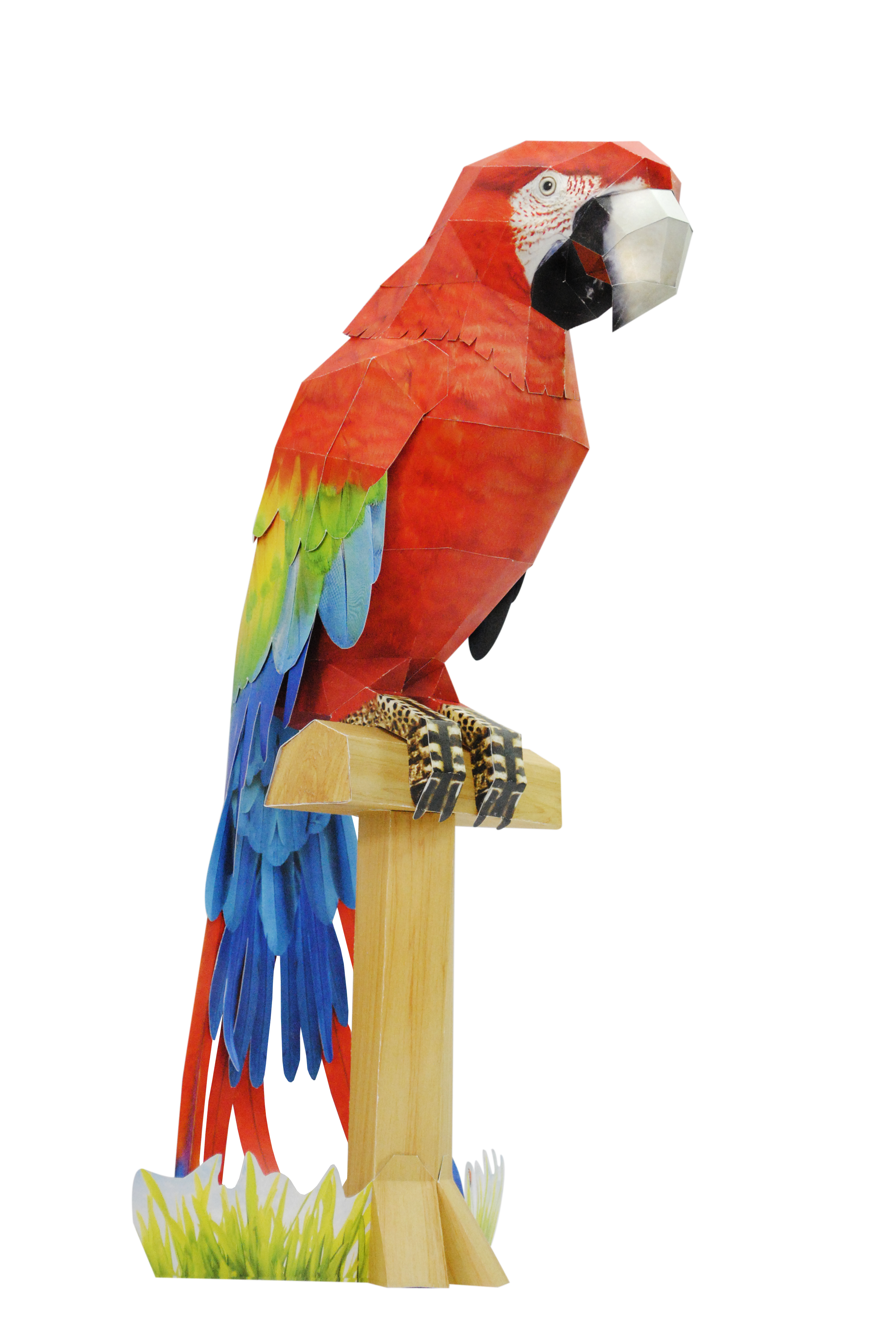 Parrot clipart hyacinth macaw. The scarlet in paper
