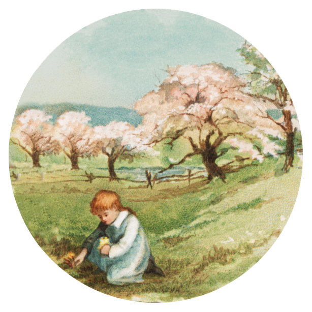 Wet clipart spring. Seasons of the year