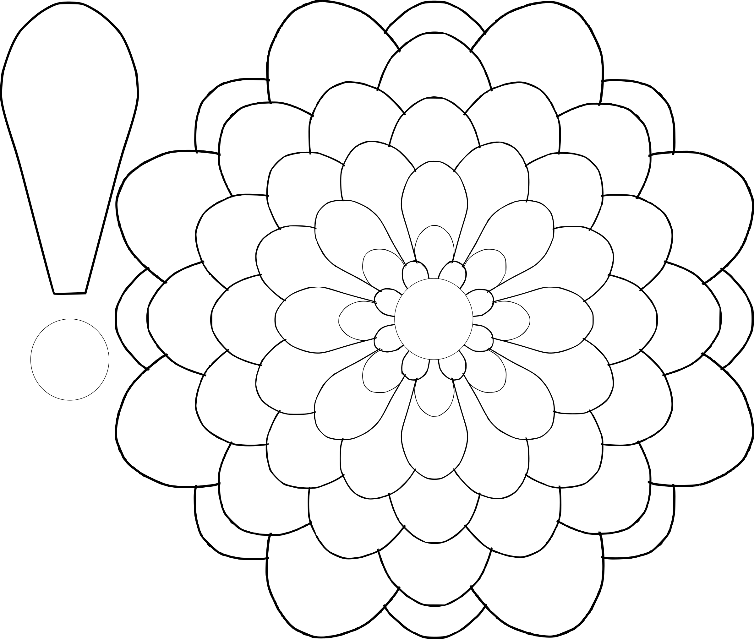 Mayflower clipart colour flower. Drawing template at getdrawings