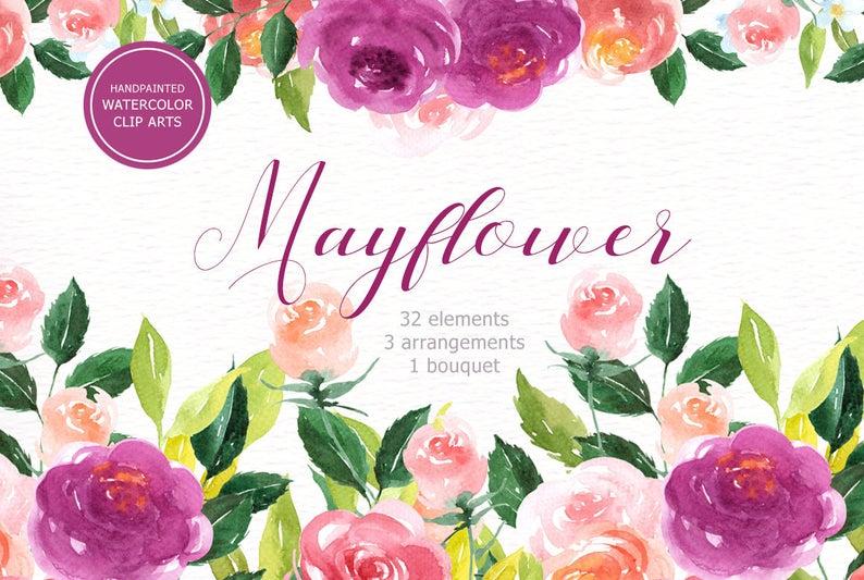 Watercolor wedding invitations beautiful. Mayflower clipart pretty flower