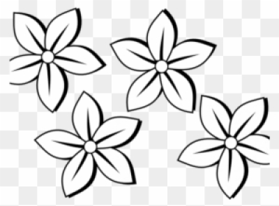 Mayflower clipart wildflower. Flowers png and vectors