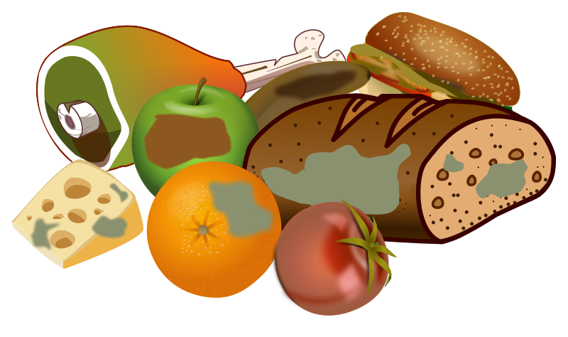 Wasting food medium image. Meal clipart vegetarian meal