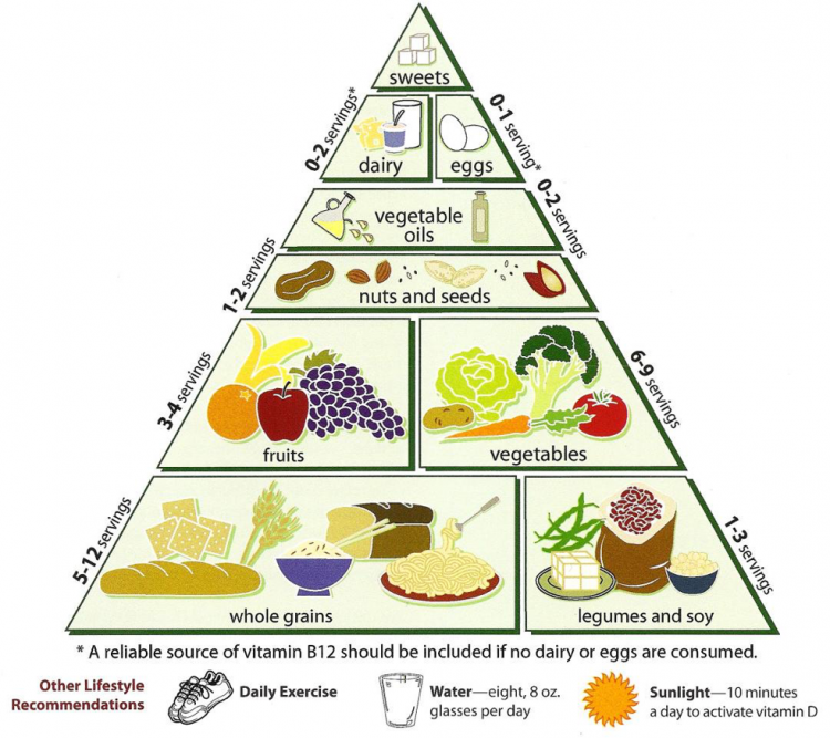 Are you up to. Meat clipart food pyramid