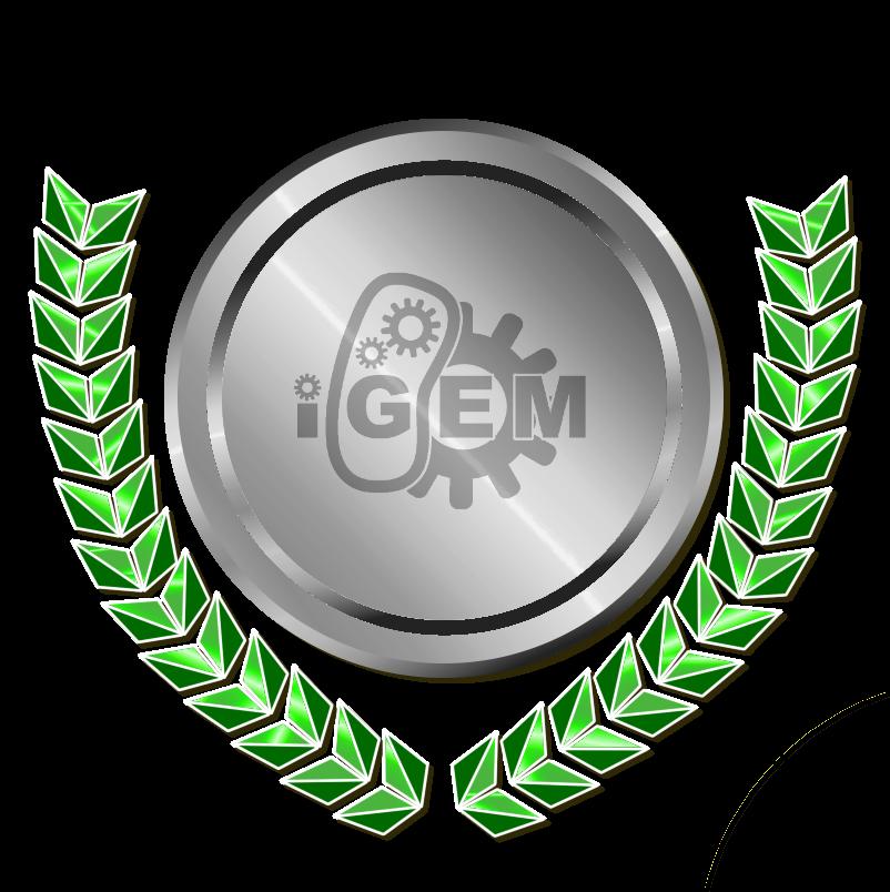 Medal accomplishment