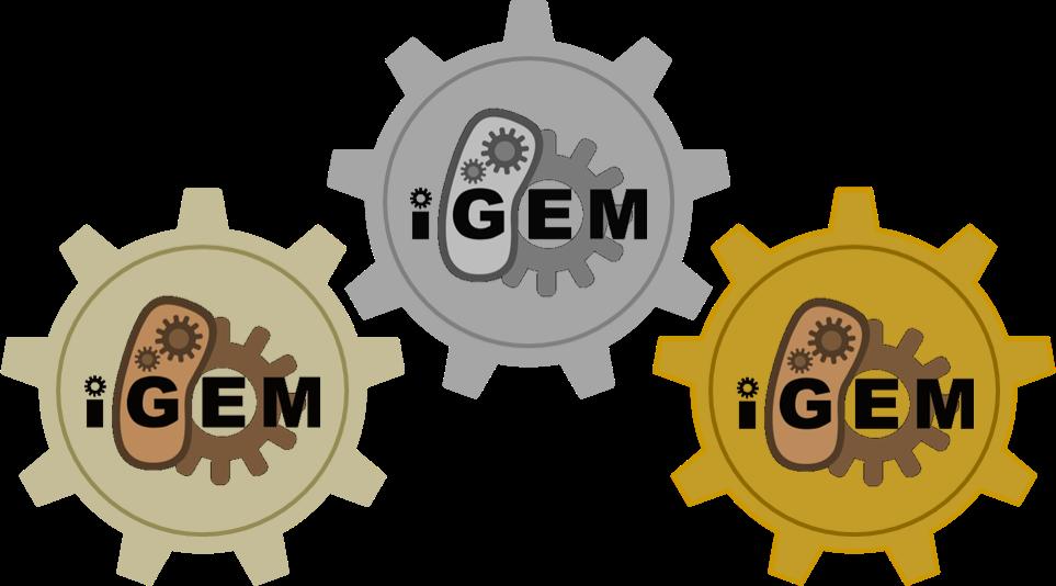 Team ugent belgium medals. Medal clipart achievement