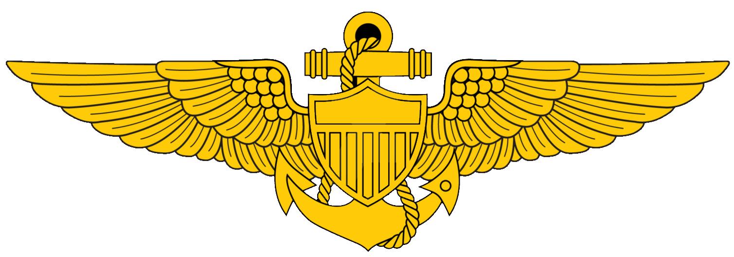 Awards carrier air wing. Pilot clipart pilot navy