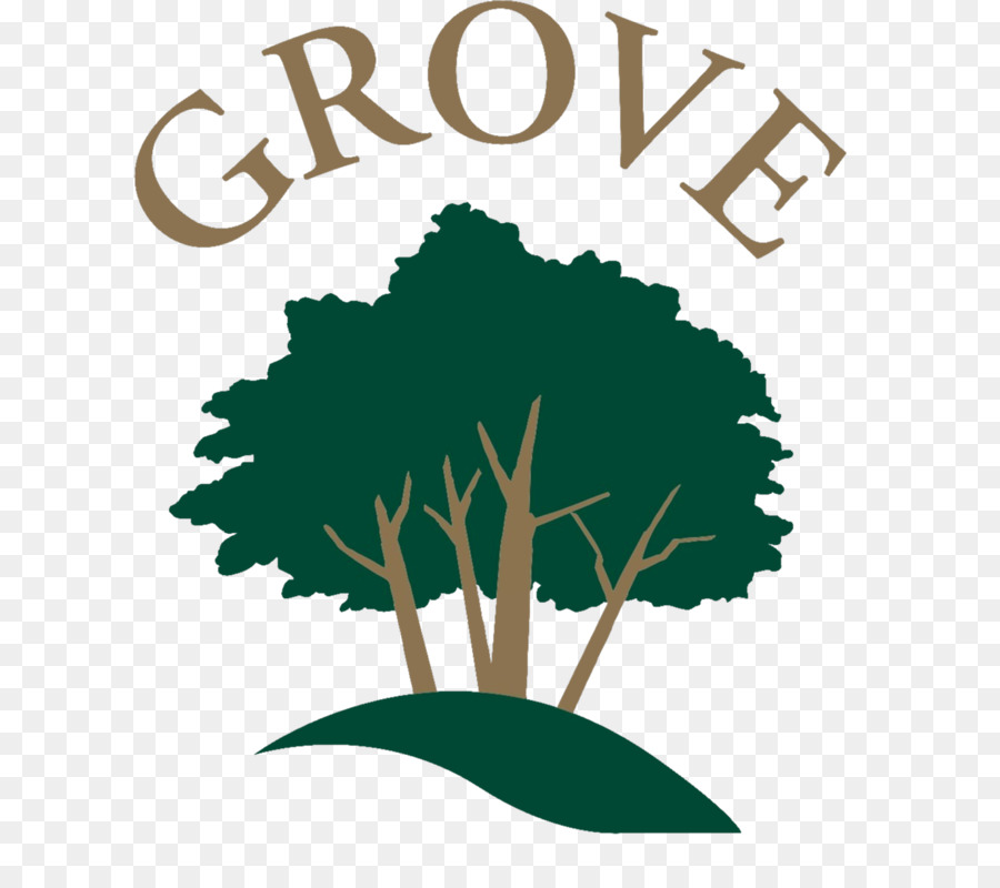 Green leaf logo medicine. Medical clipart tree