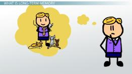 Long term definition types. Memories clipart learning and memory