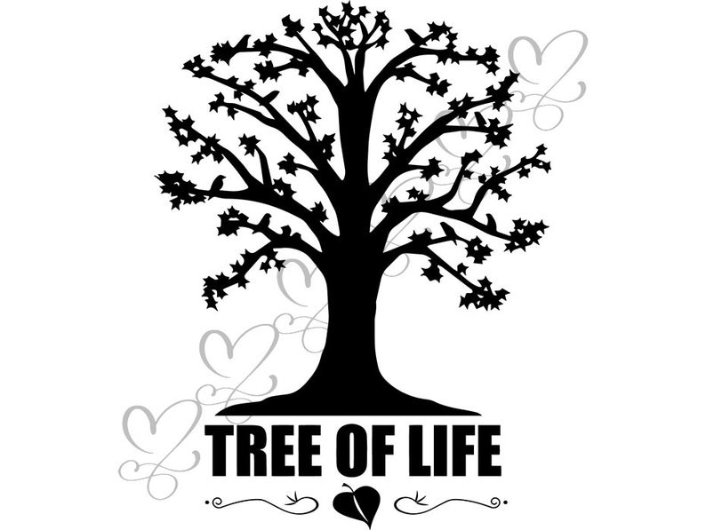 Memories clipart love life. Family tree of nature
