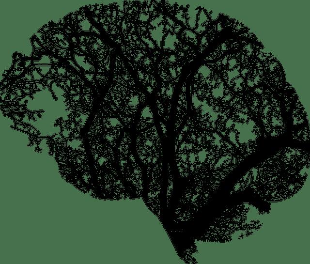 Memories clipart prayer tree. How to improve memory
