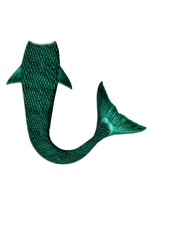 Mermaid png images. Tail by manilu on