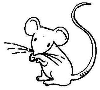 Mouse clip cliparting com. Mice clipart line art