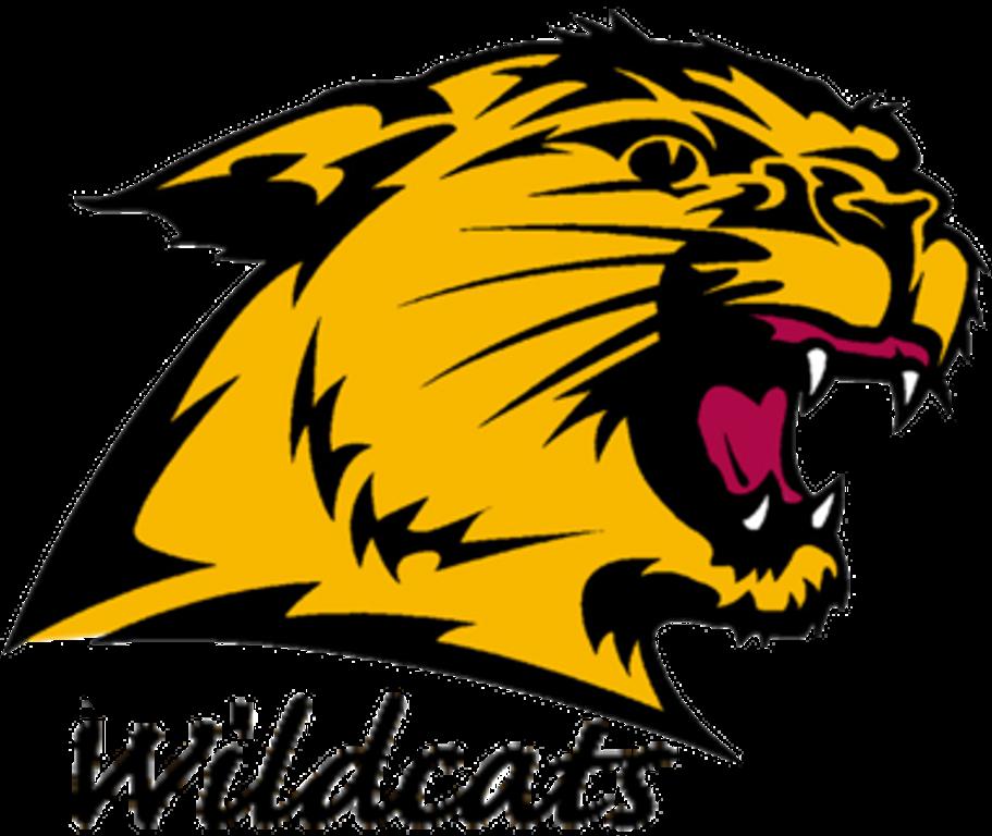 Wildcat clipart superior. Mtu v nmu hoops