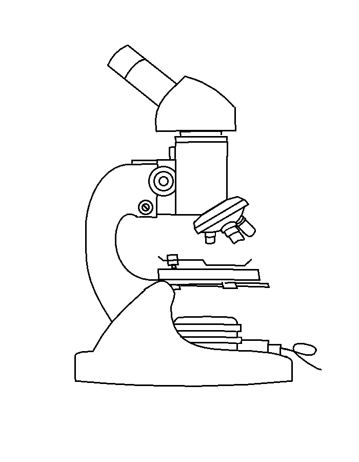 New drawing images from. Microscope clipart draw