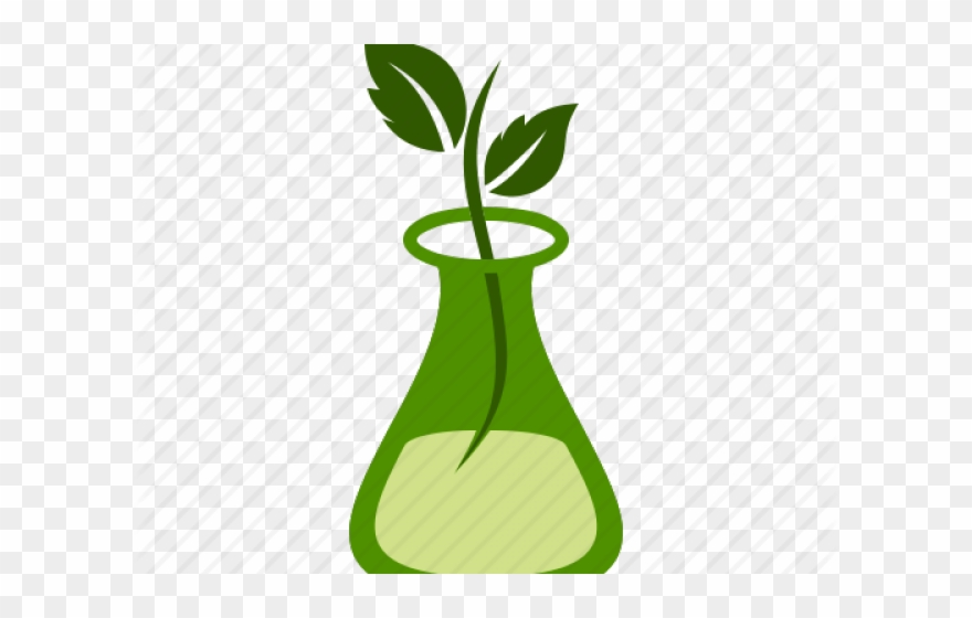 Png download . Microscope clipart plant science