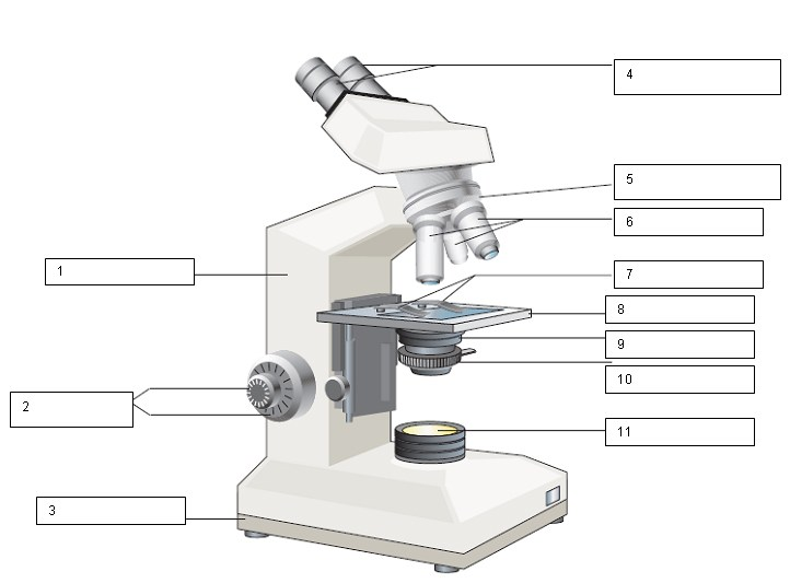 Microscope clipart unlabeled, Microscope unlabeled ...