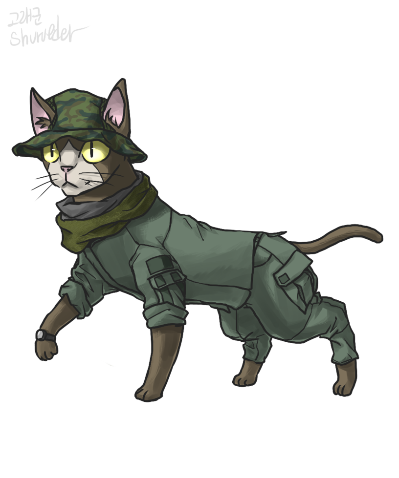Cat by shurueder on. Military clipart cute