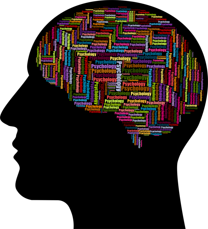 Psychology clipart man. Brain organ human behavior