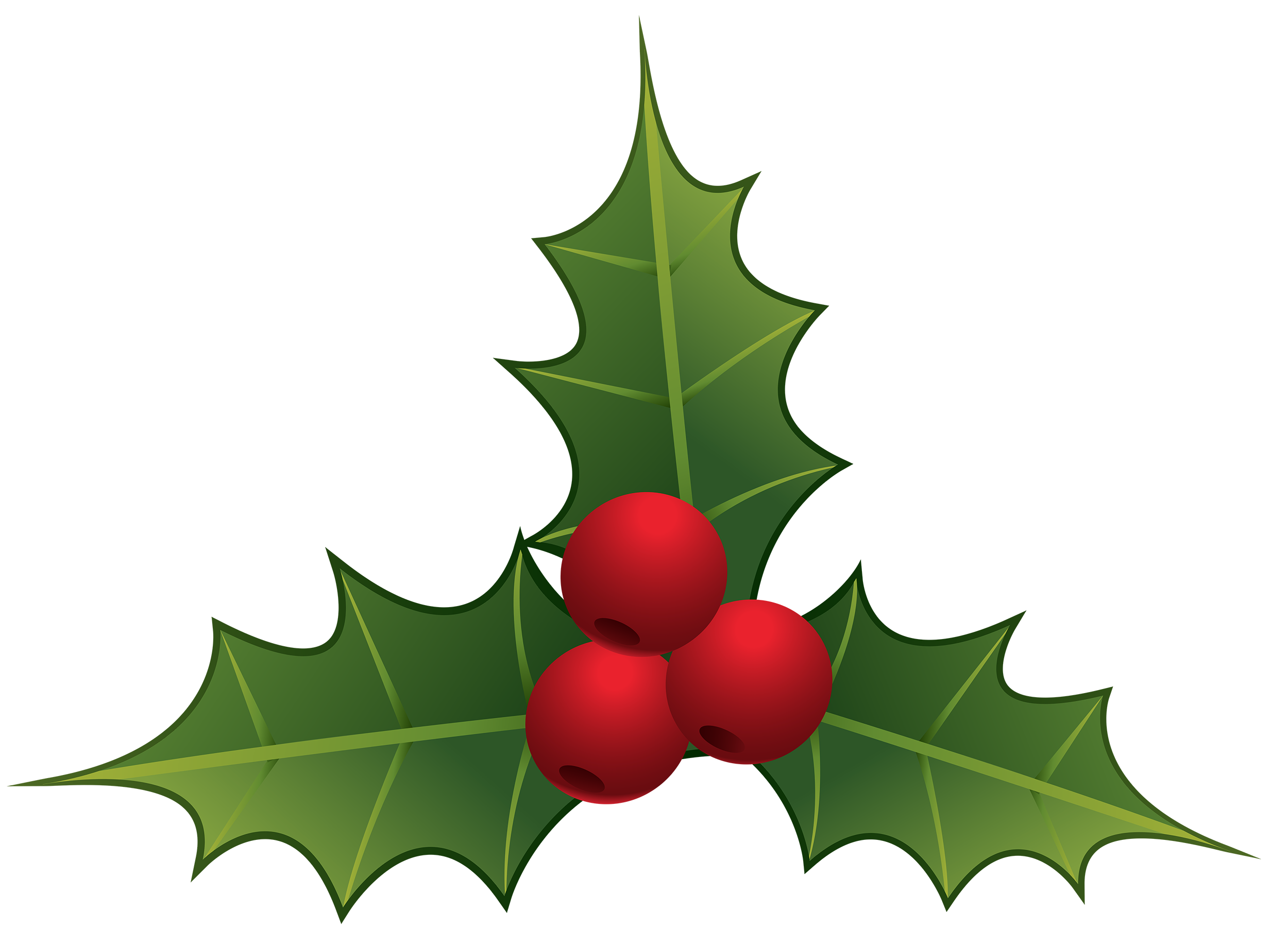 Mistletoe png best web. Clipart christmas leaves