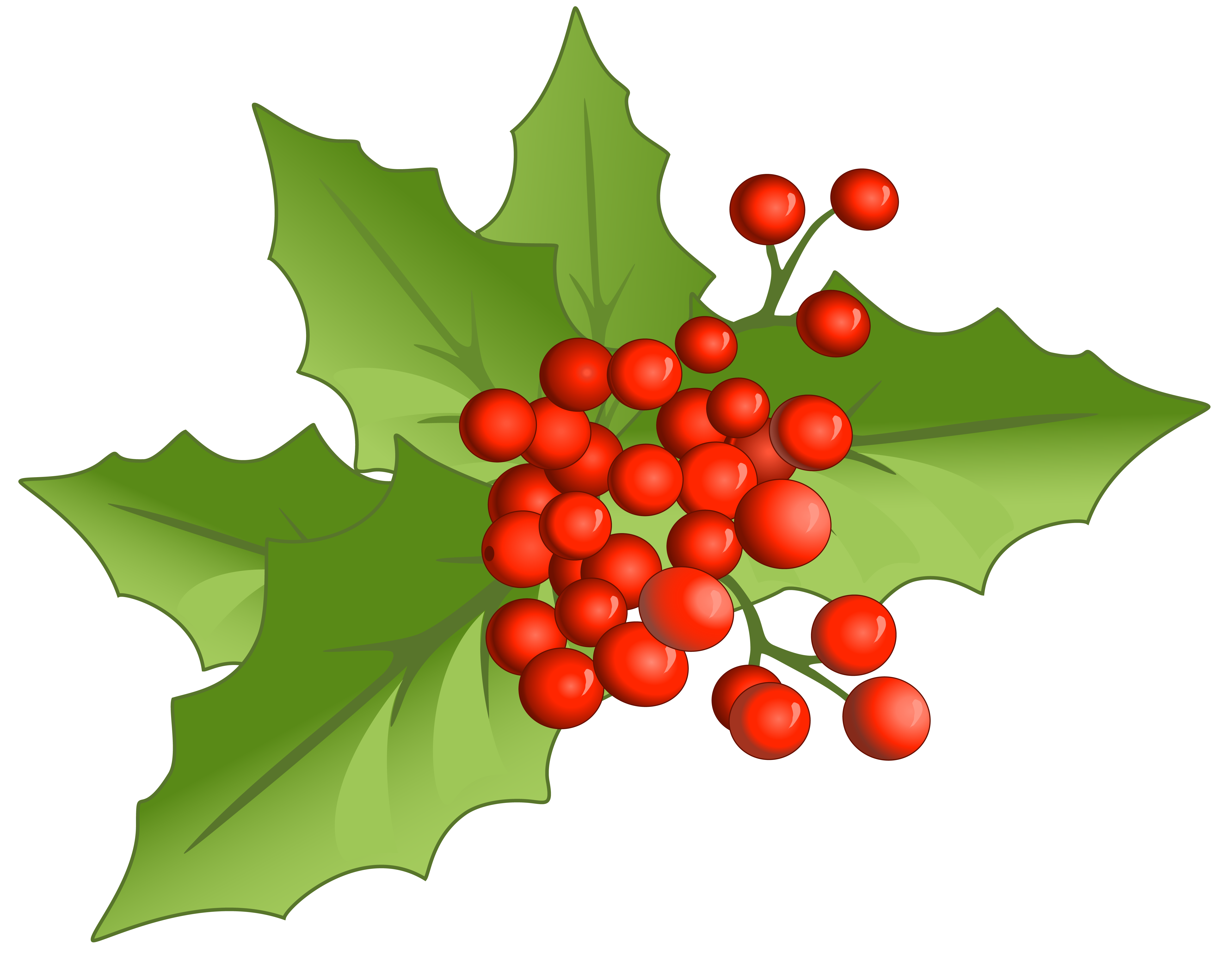 Mistletoe clipart. Christmas large png gallery