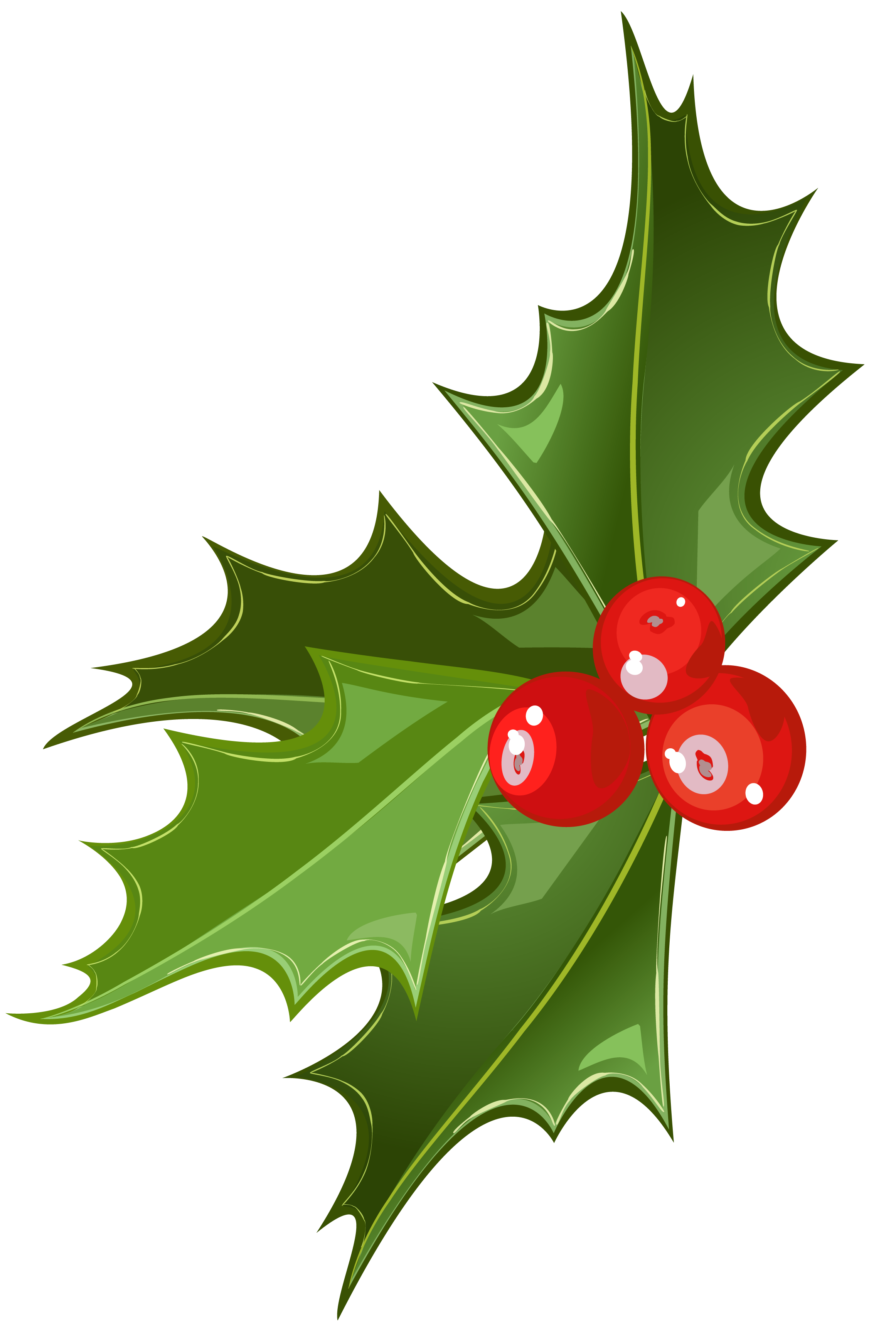 Christmas picture gallery yopriceville. Mistletoe clipart