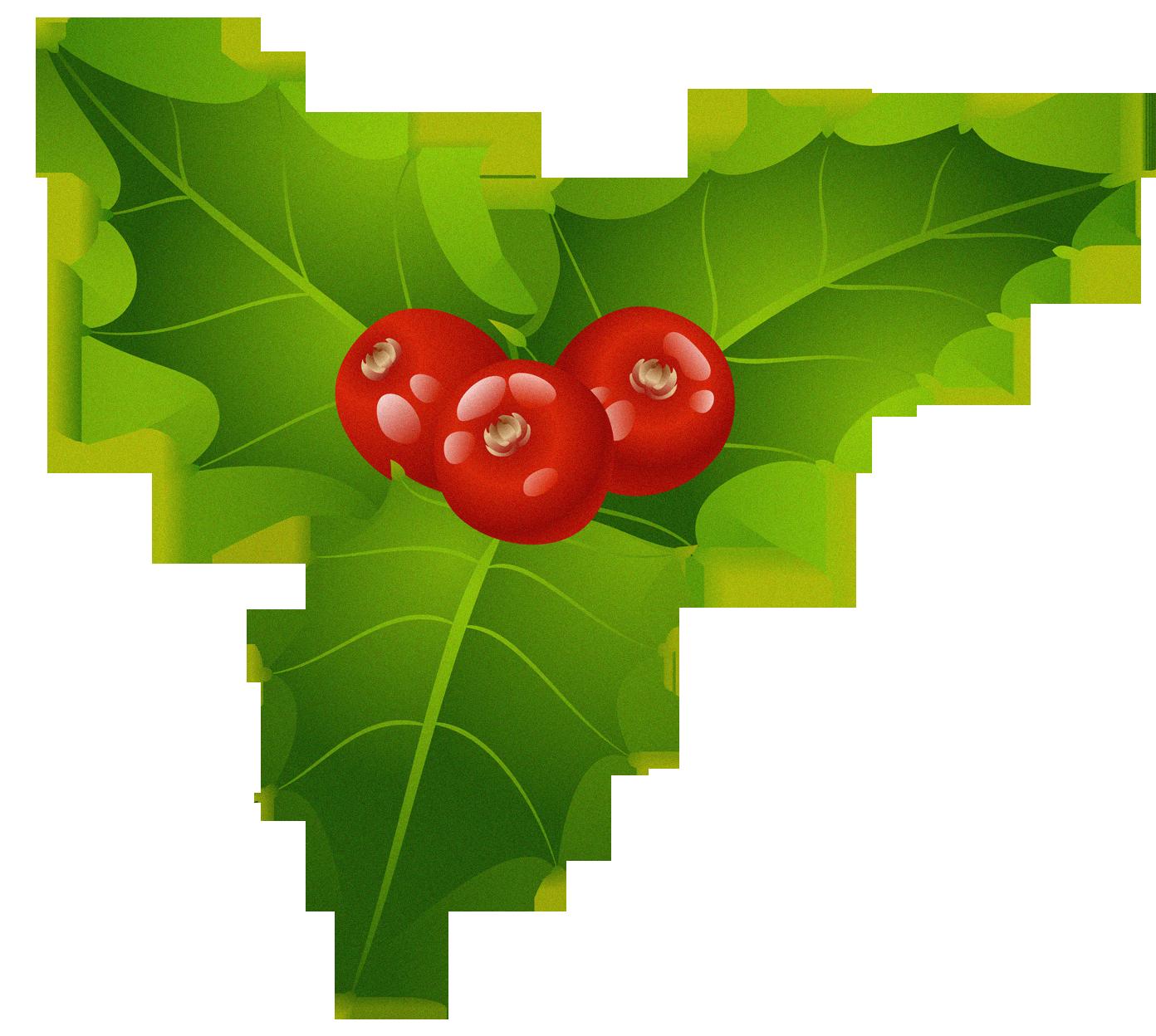 Christmas png sticker pinterest. Mistletoe clipart