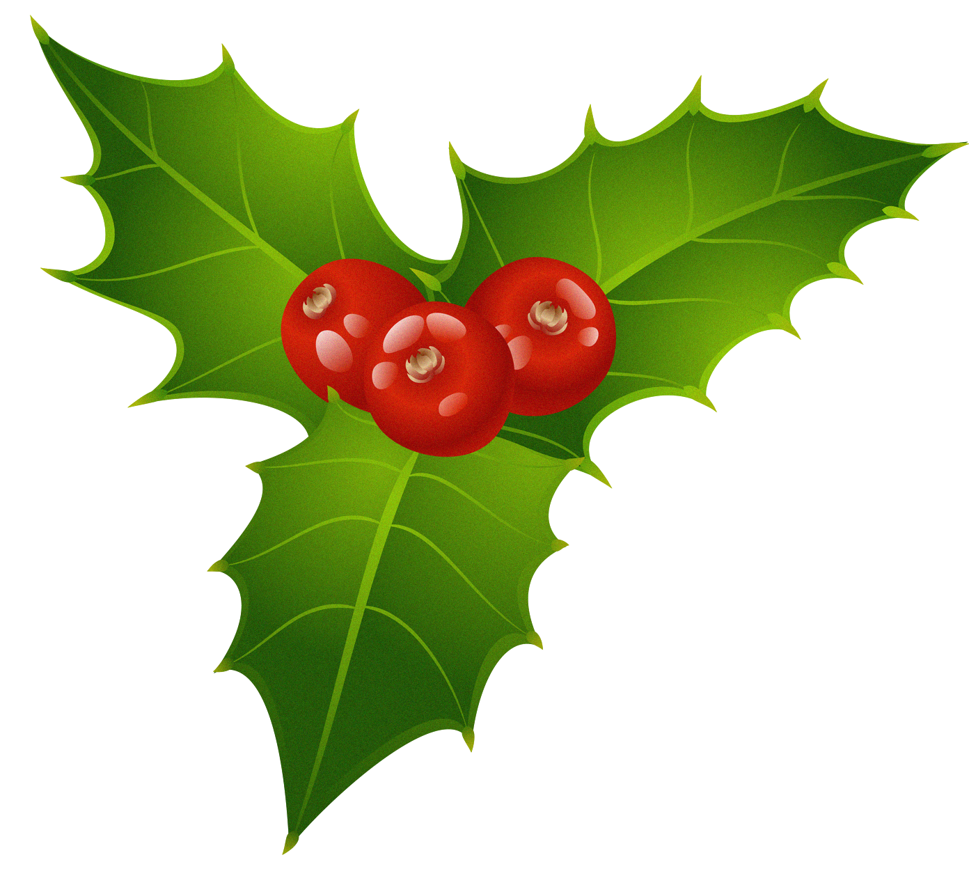 Mistletoe clipart. Free cliparts download clip