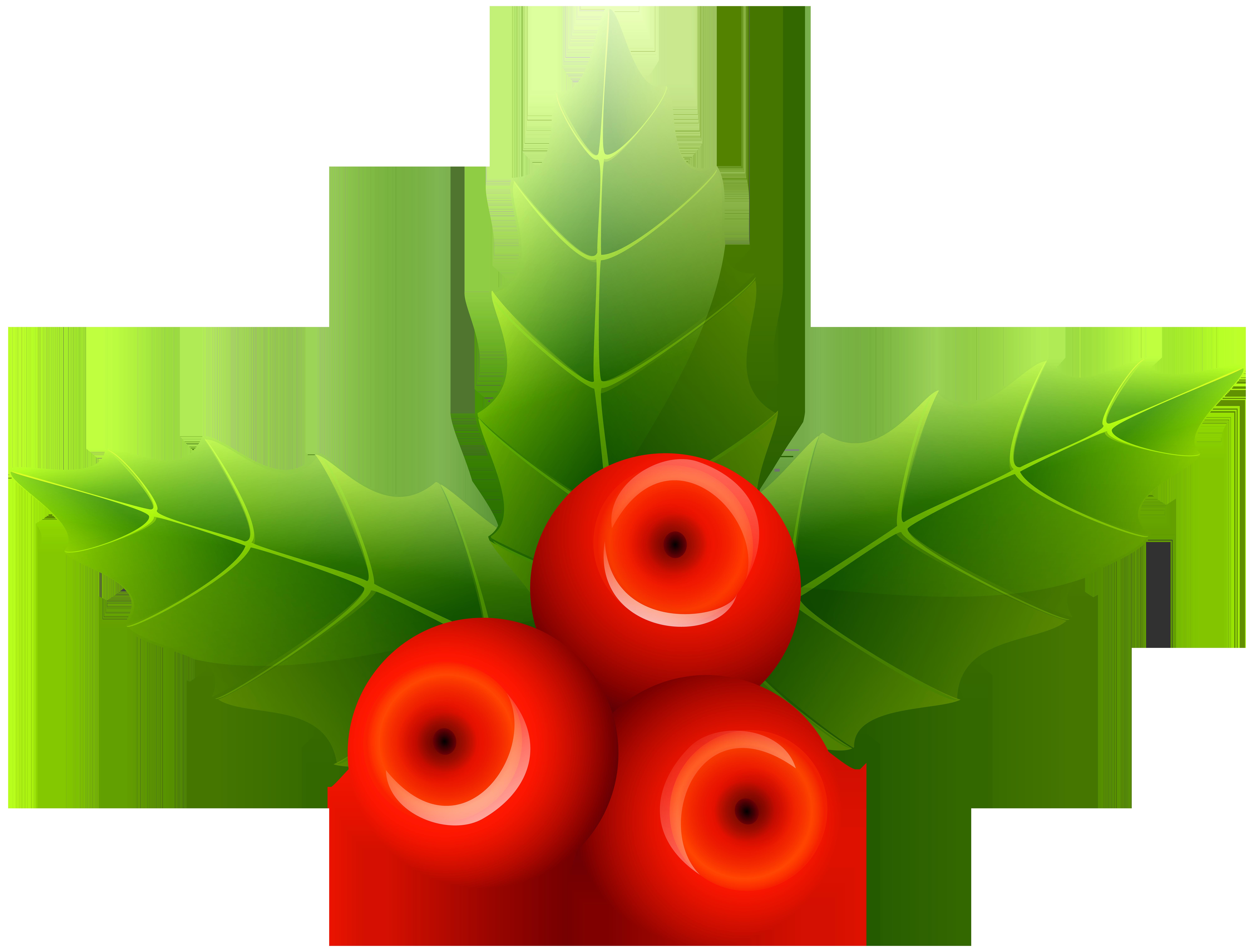 Png clip art image. Mistletoe clipart